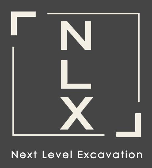 NLX Logo